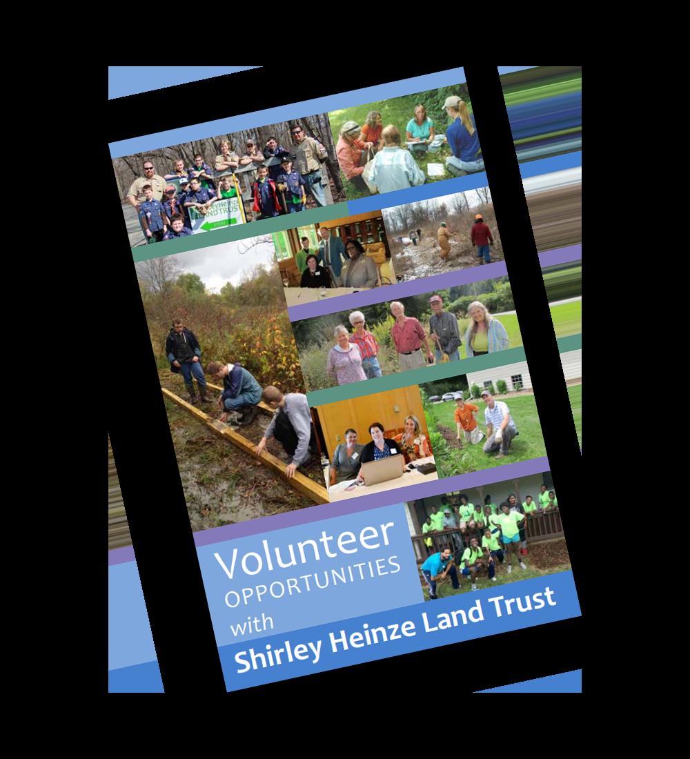 Volunteer Guide
