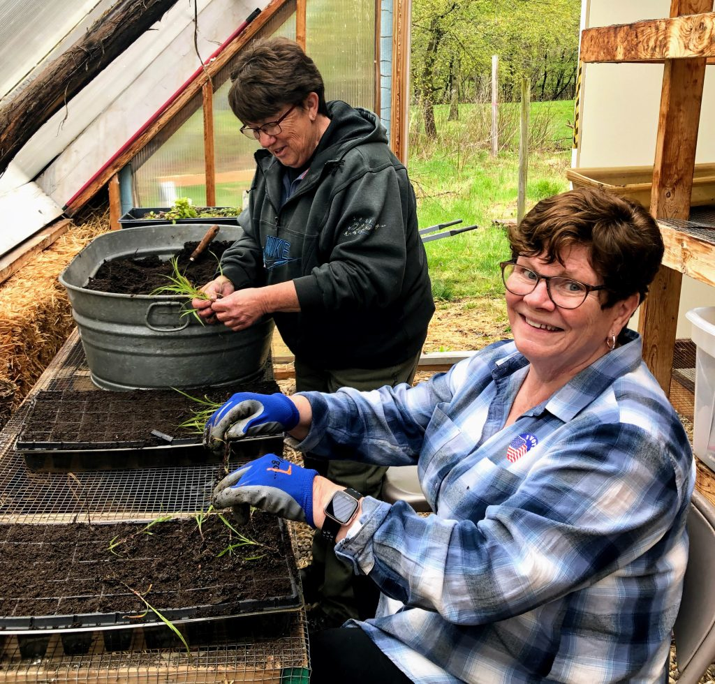 photo of Maureen Kolbusz and Kaye Martin working in the greenhouse at Barker Woods