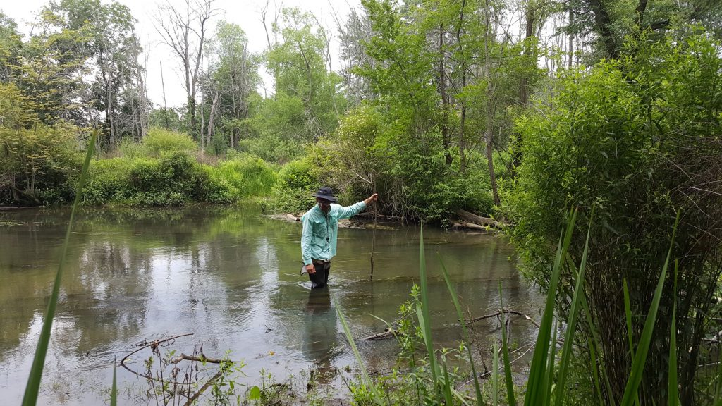 Orbis Botanist Nathanael J. Pilla monitoring the Little Calumet River